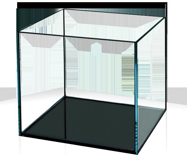 Inch Glass Aquarium